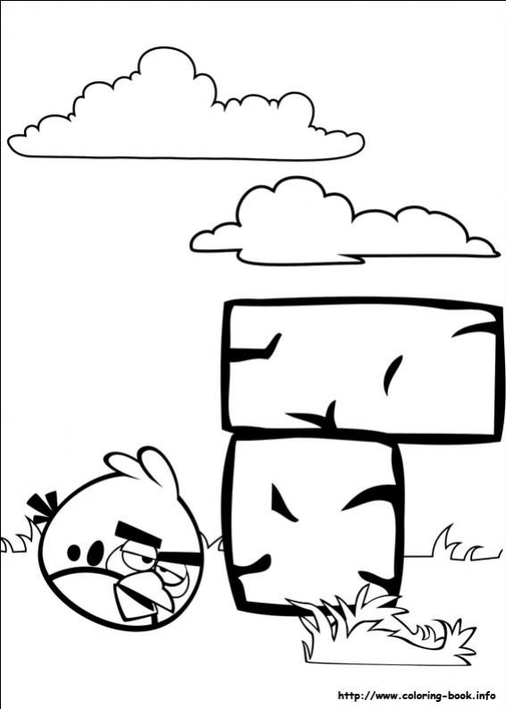ภาพวาดระบายสีAngry Birds 21